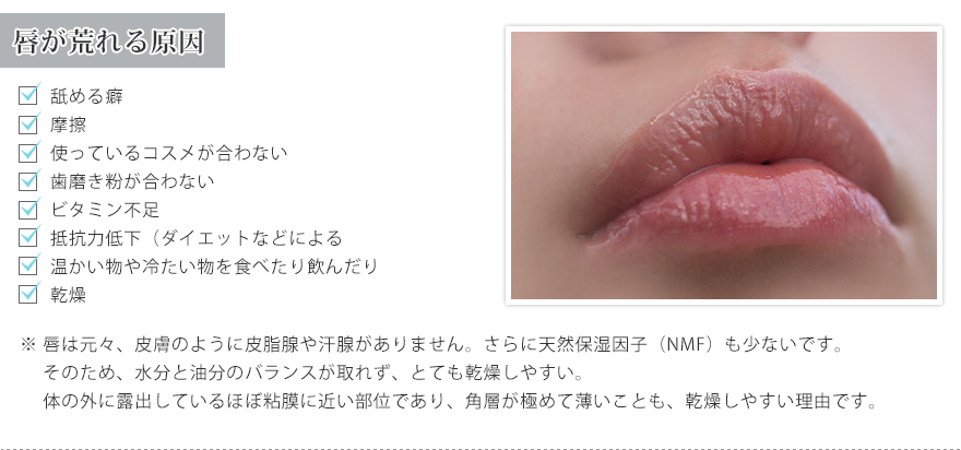 PINCHER Everyday Lip""